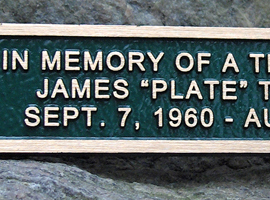 2 in. x 10 in. Bronze memorial plaque with raised letters, green stain, leatherette background & concealed studs.